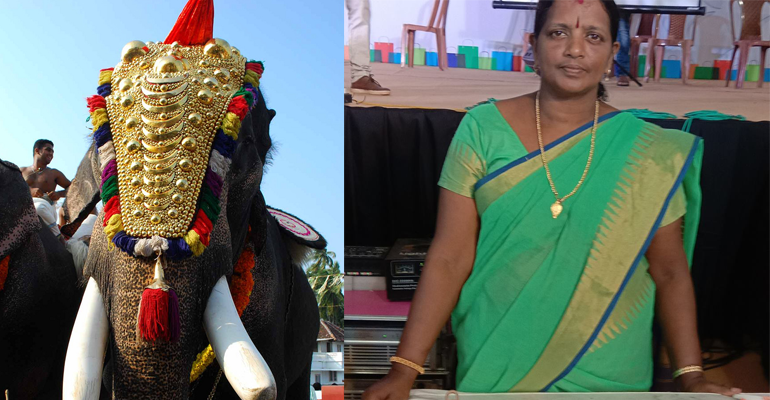 By Making Caparison, This Housewife From Thrissur Is Shattering Stereotypes