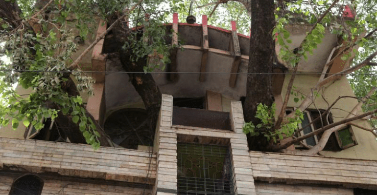 This MP Family Didn't Cut The 150-YO Sacred Peepal Tree, Rather Built A House Around It
