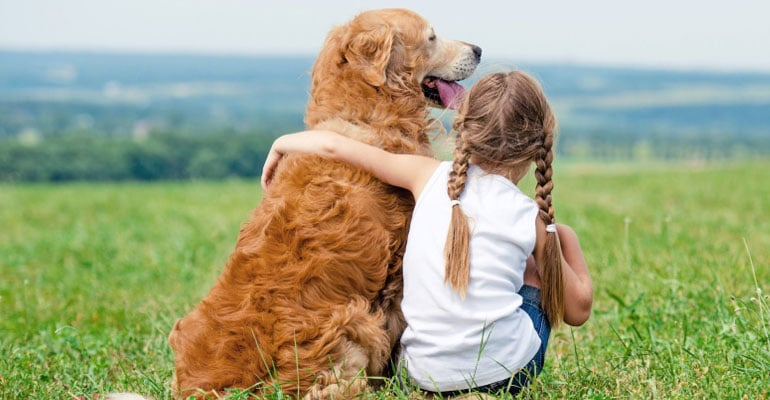 Top Vacation Destinations For You And Your Dog