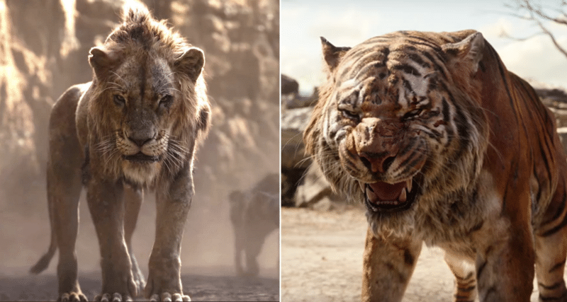 The Lion King Vs. The Jungle Book: Same Story But In 2 Different Styles?