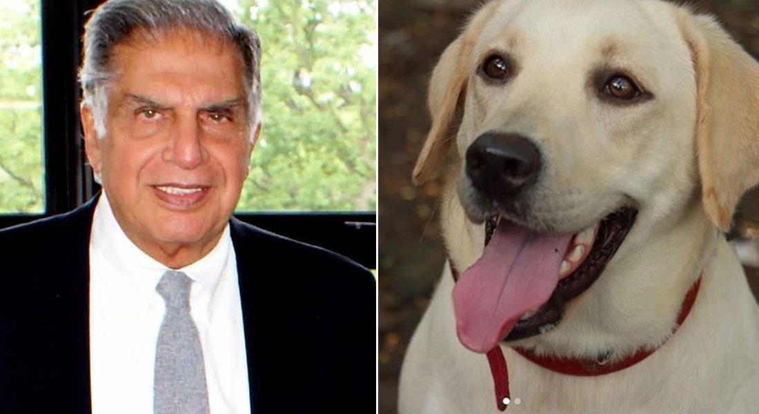 Ratan Tata love for dog