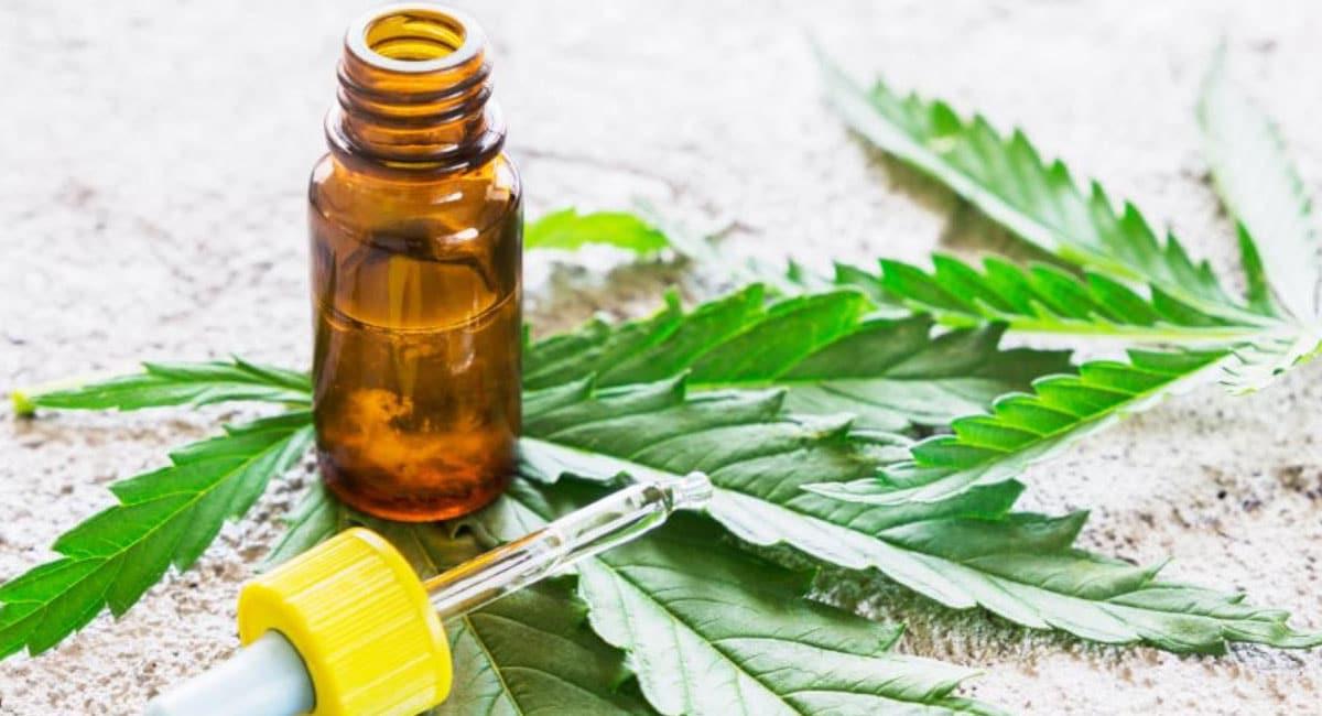 CBD vs. Traditional Medicines: Who Will Win?